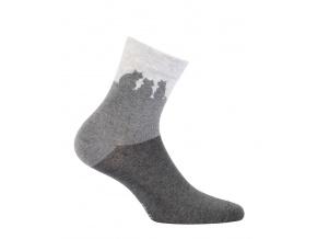 Dívčí ponožky WOLA KOČKY šedé