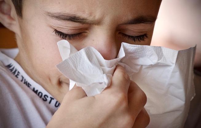 Jak zařídit domácnost, když jste alergik nebo ho máte v rodině?