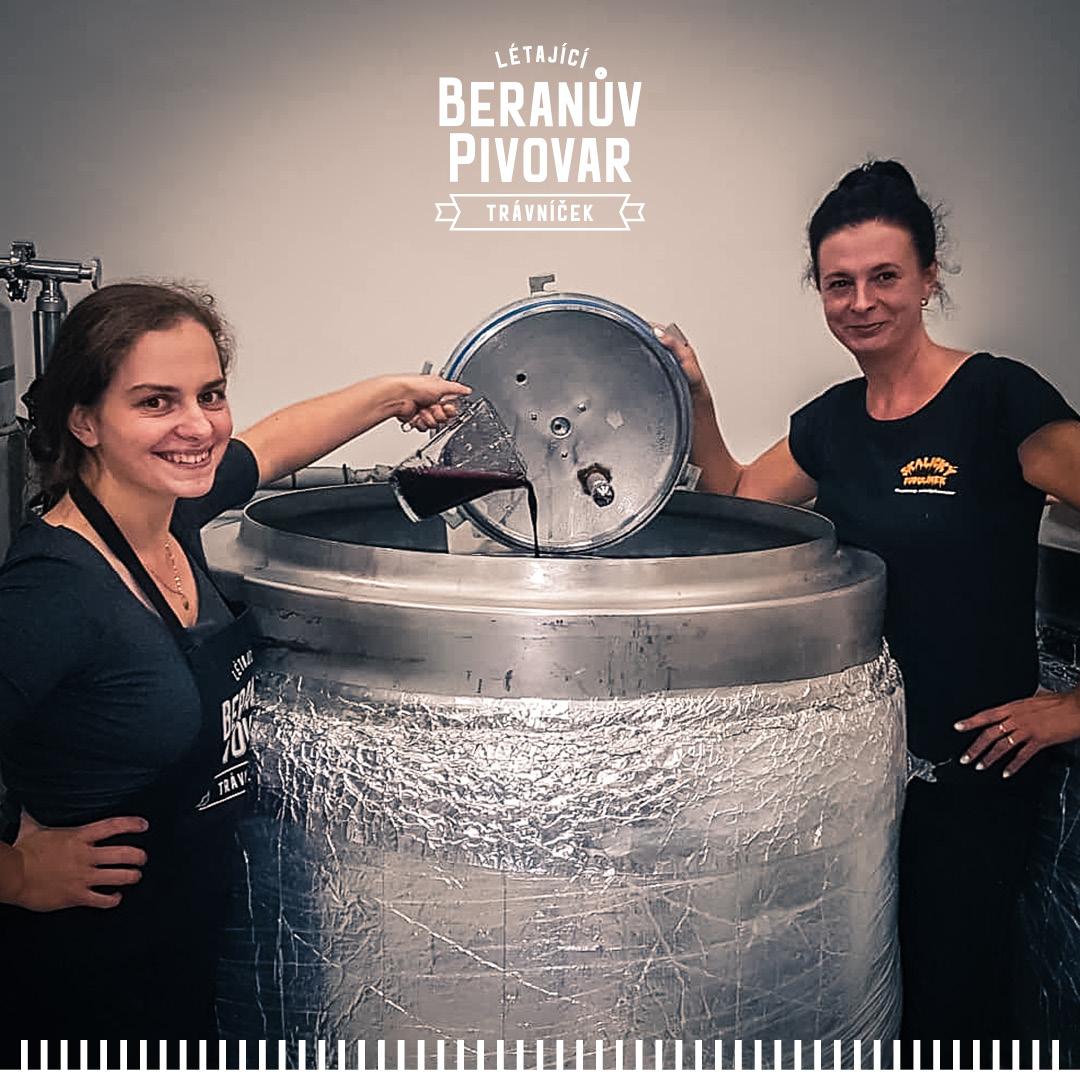 Beranův bezinkový Berliner 11%