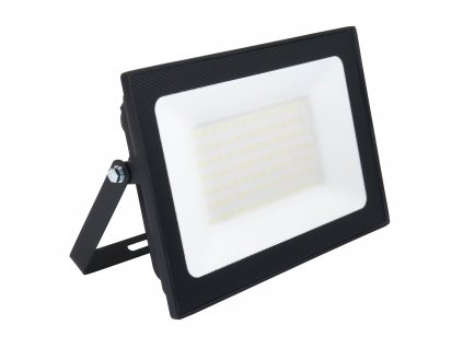 Ecolight EC79730 100W 1