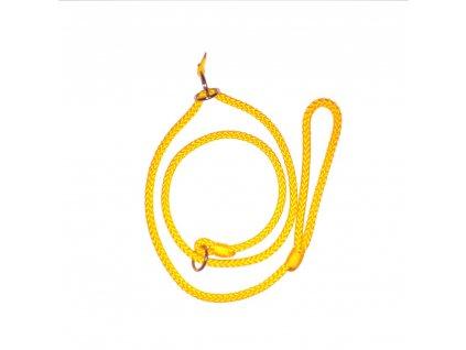 Žluté césarovo vodítko