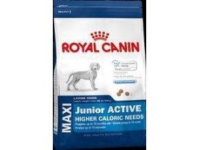 Royal Canin Maxi Junior Activ 15kg