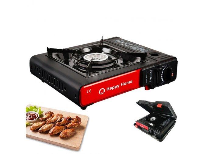 portable gas stove home