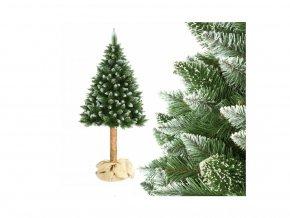 Vánoční stromek na pařezu Borovice 180cm horská Luxury Diamond