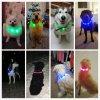 USB LED obojok pre psa(6)