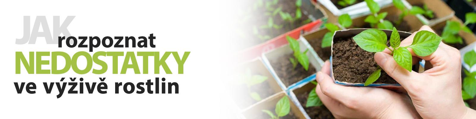 Jak rozpoznat nedostatky ve výživě rostlin