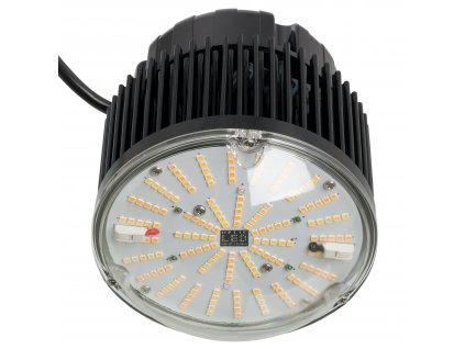 09 2 OPTIC LED 1397 F V1 1024x1024@2x