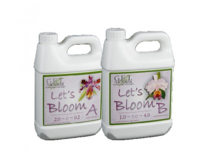 GET Lets Bloom A+B