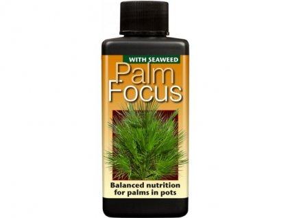 Growth Technology Palm Focus