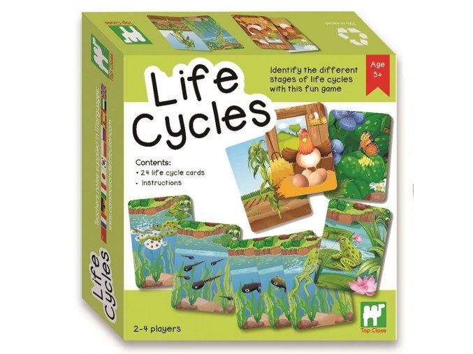 Životní cykly (life cycles)
