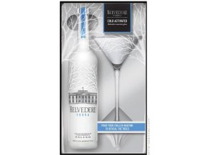 belvedere vodka with martini glass poland 10770277