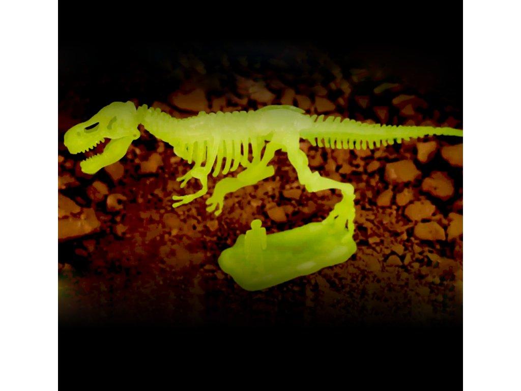 0048151 sada pro male archeology tyranosaurus rex