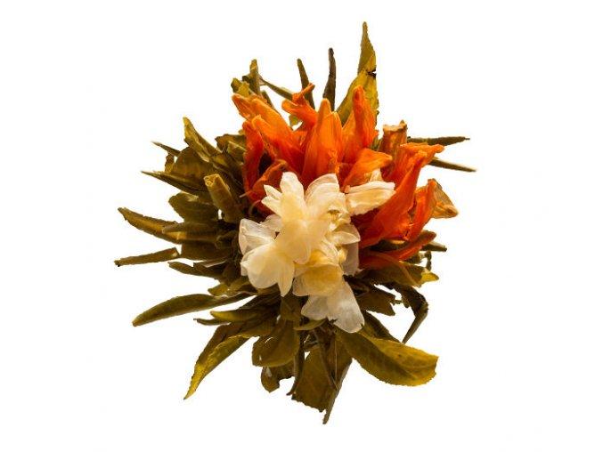 Hua Hao Yue Yuan kvetoucí čaj (Hmotnost 1 ks)