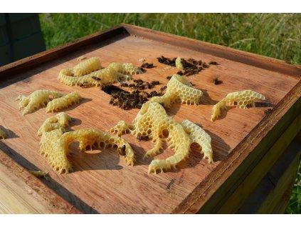 včelí vosk2