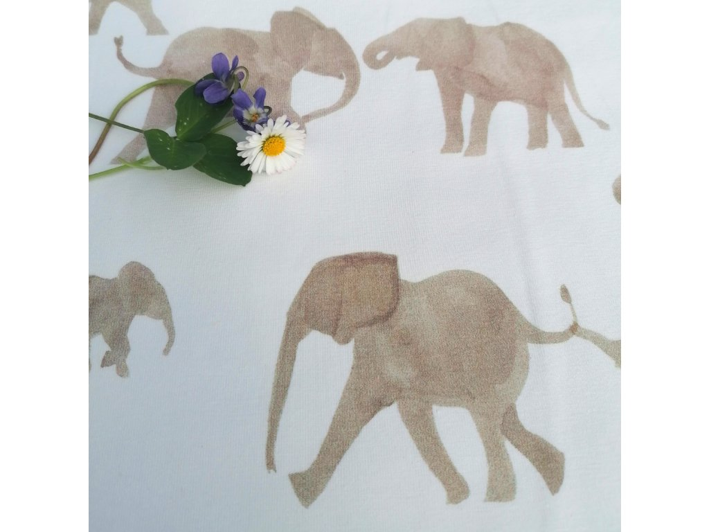 "úplet ""sloni"""
