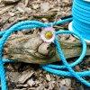0,5 m bavlněná tkanice tyrkysová 5 mm
