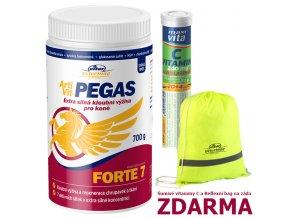 ArtiVit Pegas Forte VItaminC bag