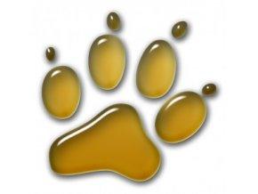 3D Samolepka 10 cm tlapka - zlatá