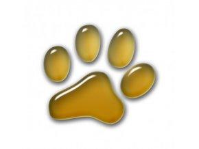 3D Samolepka 5 cm tlapka - zlatá