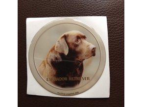 3D Samolepka 10 cm Labrador Retriever - hnědý
