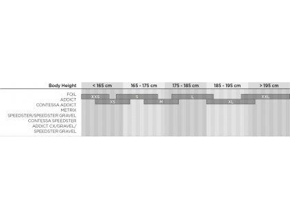 Bike Speedster 50