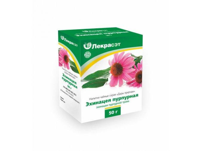 echinacea (2)