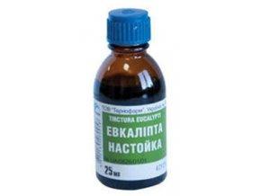 eukalypt