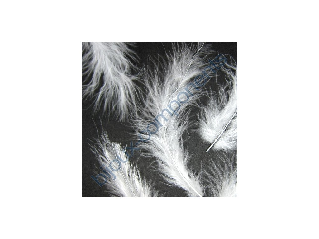 feather wht v