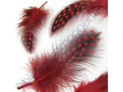 feather 1 red v