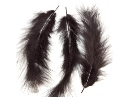 feather blk