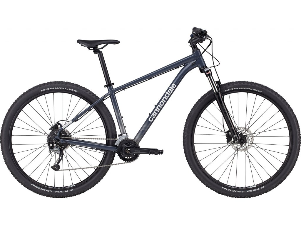 CANNONDALE TRAIL 29%22 6 2021 šeda