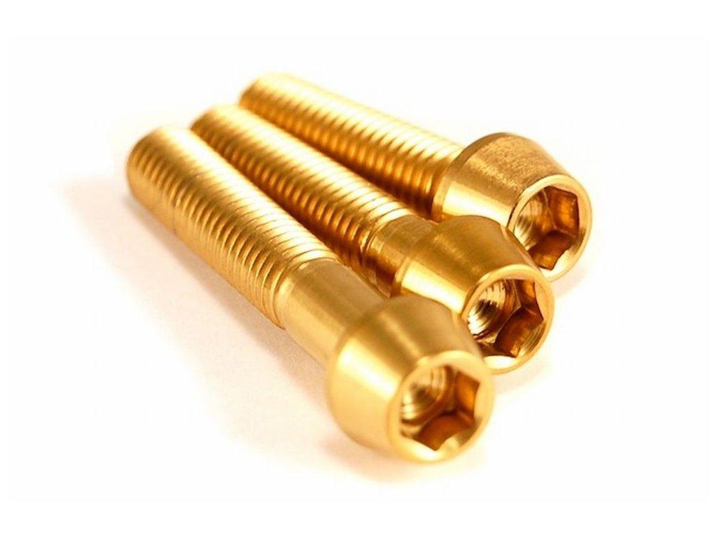 Titanový šroub M6x20mm - zlatý