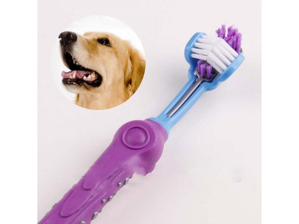 1PC Three Sided Pet Toothbrush Dog Brush Addition Bad Breath Tartar Teeth Care Dog Cat Cleaning 088266bc 4c71 4e68 bf9a 5c413e669e05 1024x1024