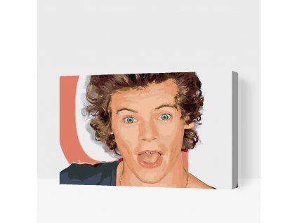Malen nach Zahlen - Harry Styles 3
