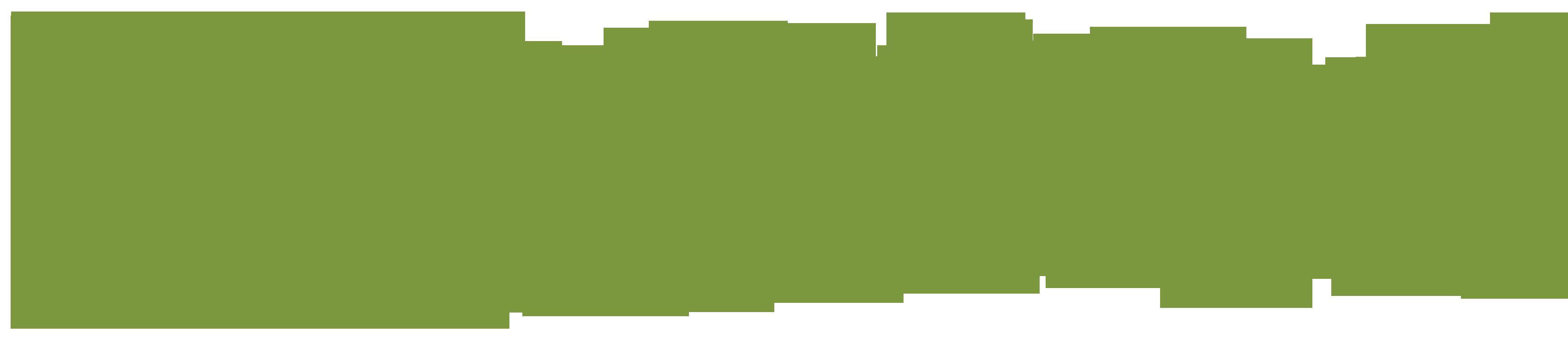 Logo_NATUR-PACK_PNG