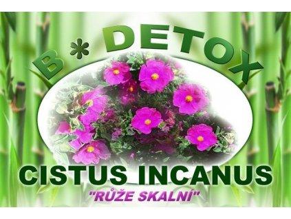 Růže skalní - CISTUS INCANUS 250g