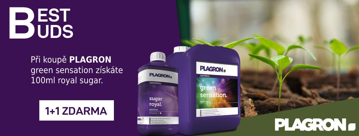 plagron booster, green sensation a sugar royal