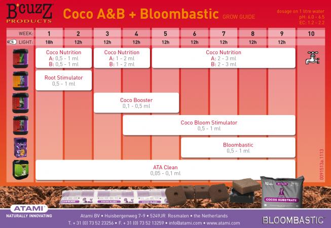 Bcuzz+BLB-CocoAB-653x450