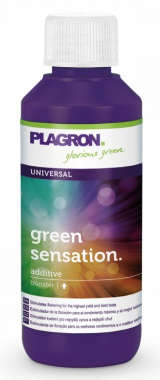 2111-1_plagron-green-sensation-100ml