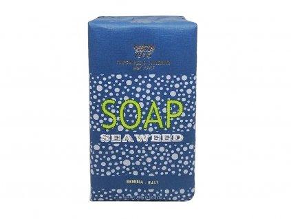 neni morska rasa sea weed