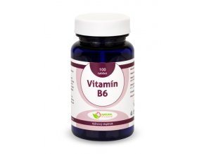 Vitamin B6 tablety 100ks