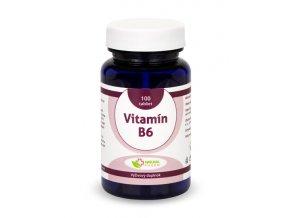 Vitamin B6 tablety 100ks