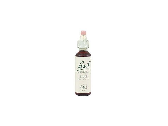 PINE - Borovica lesná (Objem 20 ml)