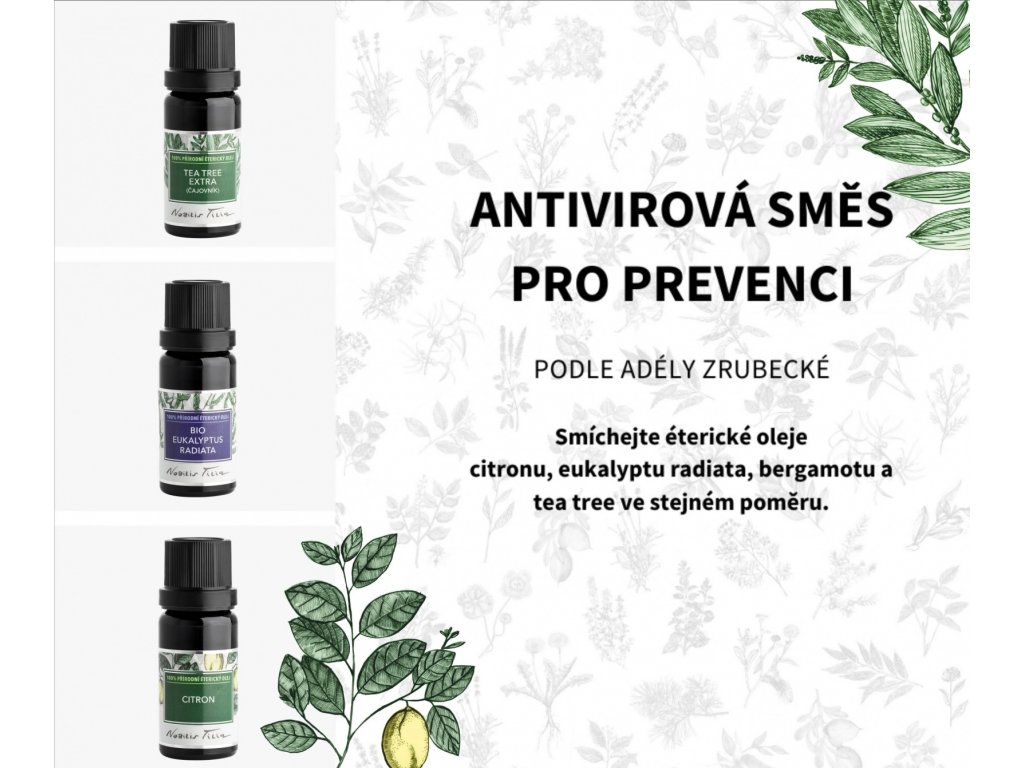 Nobilis Tilia Éterický olej BIO Eukalyptus radiata 10 ml