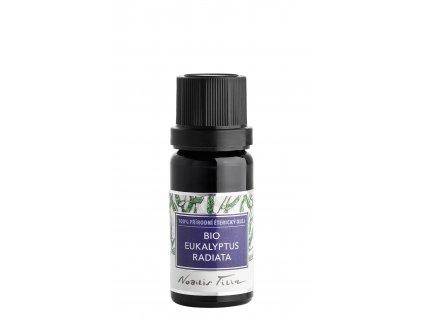 eukalyptus radiata1