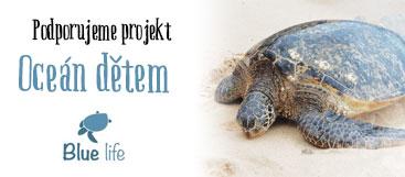 Projekt Oceán dětem