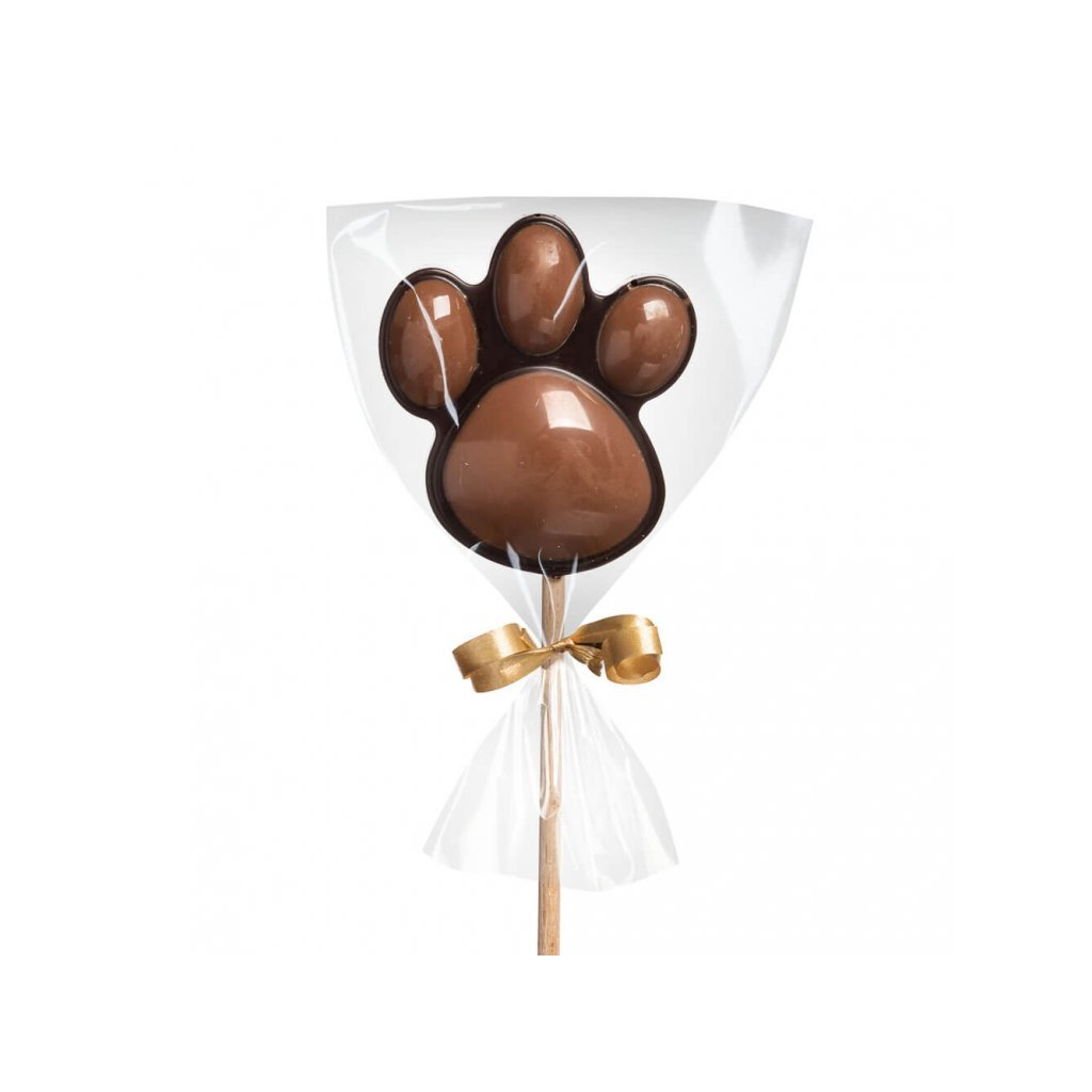 176 1 domaci cokoladove lizatko tlapka horke mlecne cokoladovna janek jpg