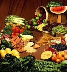 diéta nízkosacharidová SCD