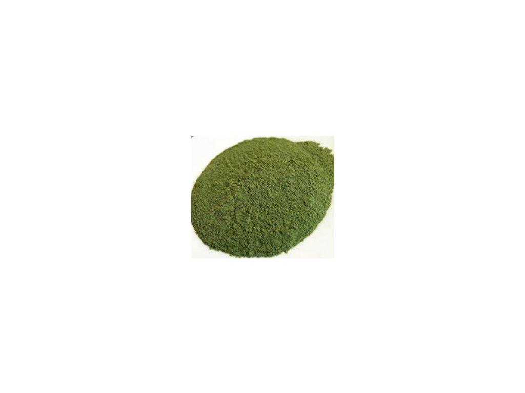 jacmen mlady zeleny mlety 500g