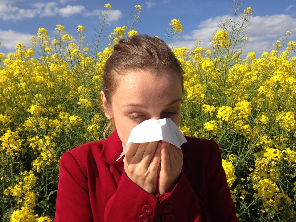Pylová alergie - jak na ni vyzrát?